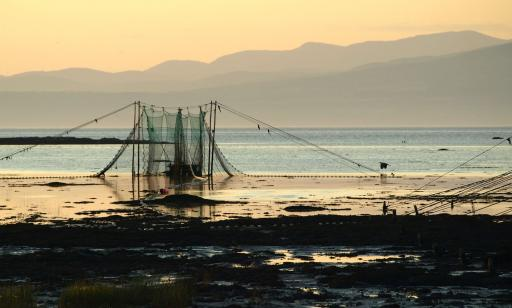 High nets held up by poles surround a trap resting on the bottom in shallow water.